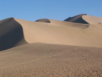 medium_desert_101.jpg
